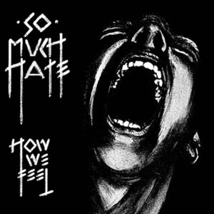 So Much Hate cover